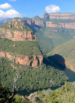 Du Kruger au Cap de Bonne Espérance : Afrique Du Sud