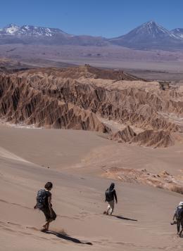 Désert et Salars : Chili
