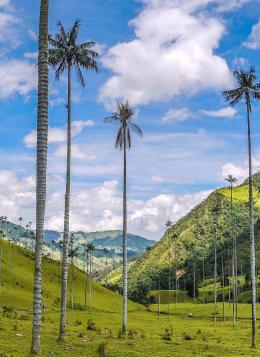 Grand Tour de Colombie : Colombie