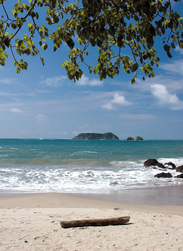 Saveurs Costariciennes : Costa Rica