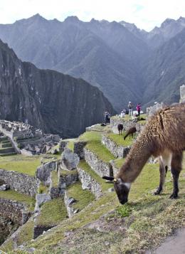 Balade au Pérou : Pérou