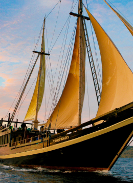 Raja Ampat, Archipel du Paradis : Indonésie