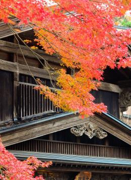 Balade au Coeur du Japon : Japon