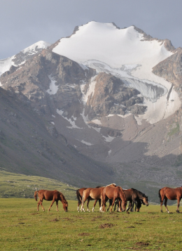 Rencontres nomades en Kirghizie : Kirghizie