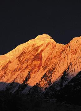 Le Tour des Annapurnas : Népal