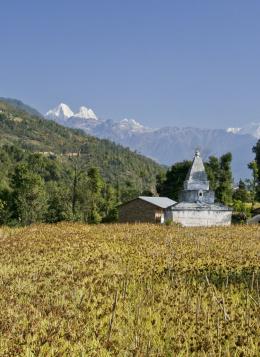 Langtang, Hélambu : Le Trek des Lacs Sacrés : Népal