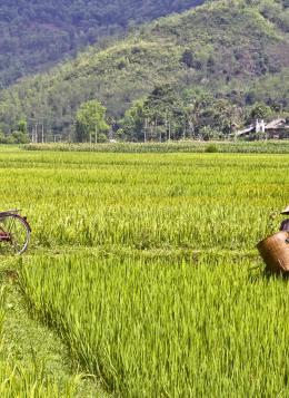 De la Baie d'Halong à Angkor : Vietnam