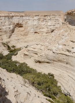 Terre Sainte, du Néguev au Lac de Tibériade : Israël