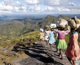Terres Malgaches : Madagascar