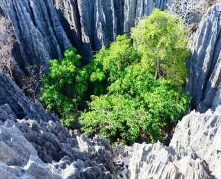 Grande Traversée des Tsingy au Makay : Madagascar
