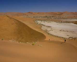 Safari et Dunes de Namibie : Namibie