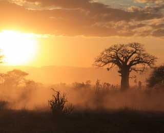 Trésors du Sud Tanzanien : Tanzanie