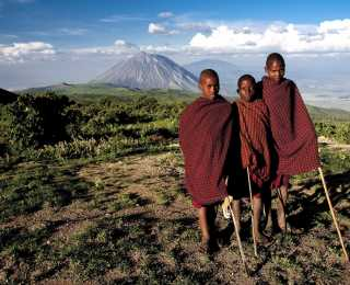 Safari, Masaï & Kilimanjaro : Tanzanie