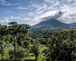 Balade au Costa Rica : Costa Rica