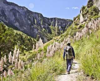 Trek des Volcans : Équateur