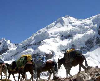 Tour de l'Ausangate : Pérou