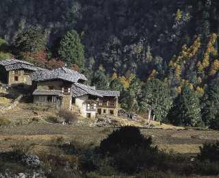 De Laya au Jomolhari : Bhoutan