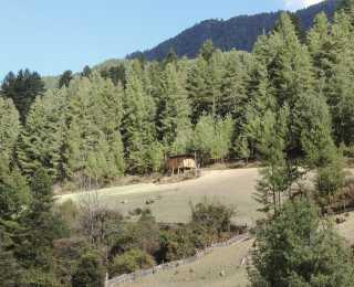 Trek insolite au Bhoutan : Bhoutan
