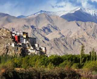 Découverte Ladakh et Nubra : Inde