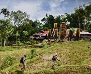 Torajas et Volcans de Sulawesi : Indonésie