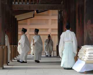 Le Printemps au Japon : Japon
