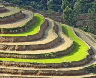 Balade dans le Haut Tonkin : Vietnam