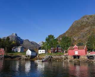 Randonnée et Croisière aux Lofoten : Norvège