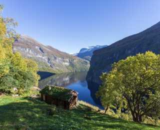 Croisière des Lofoten à Bergen : Norvège