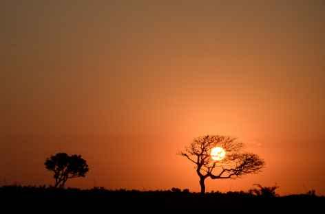 Coucher de soleil sur la brousse d'Afrique du Sud -