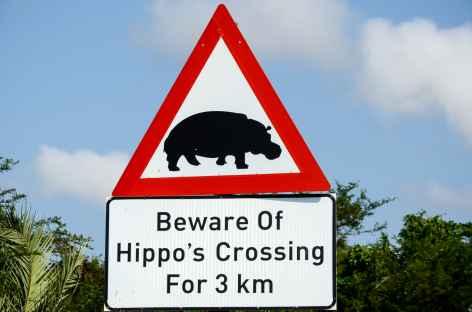 Hippo dans Saint Lucia - Afrique du Sud -