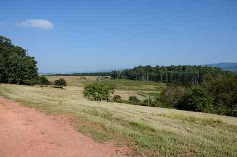 Réserve de Mliwane - Swaziland -