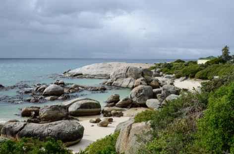 Plage de Boulders, habitat des manchots du Cap - Afrique du Sud -