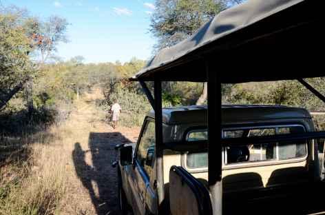 Safari en 4x4 ouvert - Afrique du sud -