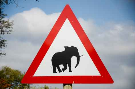Aux abords du parc Kruger - Afrique du Sud -