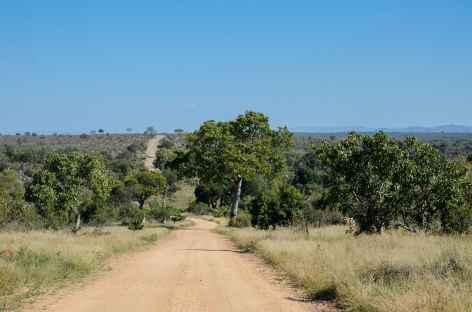 Piste du parc Kruger - Afrique du Sud -