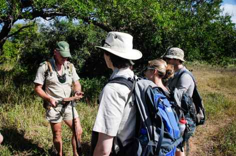 Safari à pied dans la réserve d'Ebandla - Afrique du Sud -