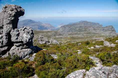 Randonnée sur le plateau de Table Mountain - Afrique du Sud -