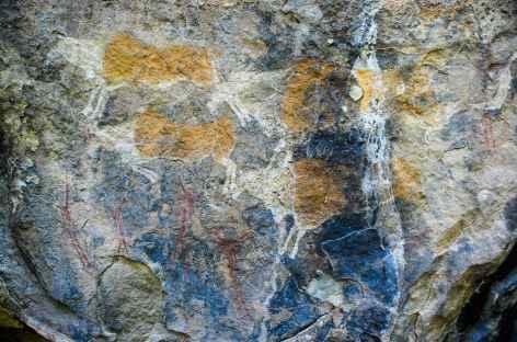 Peintures rupestres bushmen, montagnes de Maloti - Lesotho -