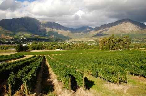 Vignobles de Franshhoek, région des vins - Afrique du Sud -