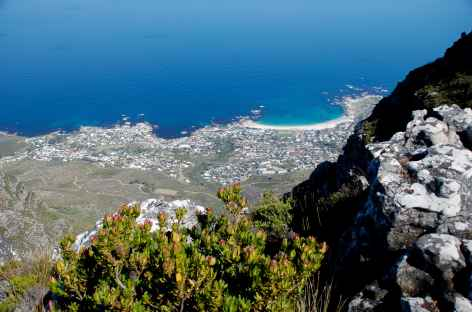 Vue plongeante depuis Table Mountain - Afrique du Sud -