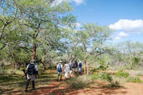 Safari à pied dans la réserve de Hluhluwe-iMfolozi - Afrique du Sud -