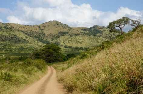 Réserve animalière de Hluhluwe-iMfolozi - Afrique du Sud -