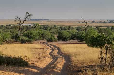 Pistes sablonneuses au coeur du Parc national de Chobe - Botswana -