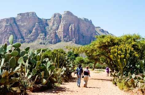 Randonnée dans le massif de Gheralta (Tigray) - Ethiopie -