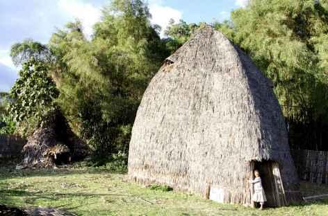 Maison traditionnelle des Dorze, région d'Arba Minch - Ethiopie -