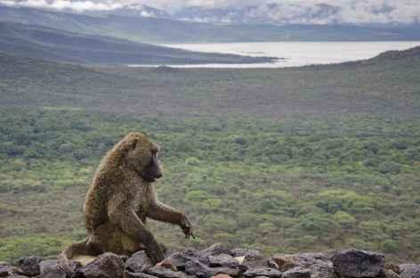 Panorama depuis notre lodge à Arba Minch, Vallée de l'Omo - Ethiopie -