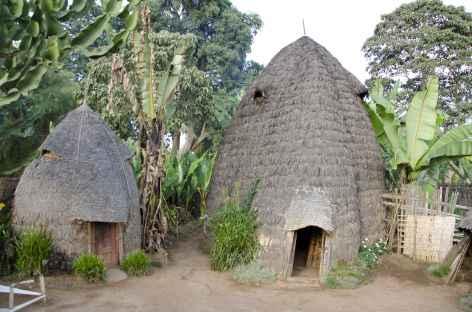 Maison traditionnelle dorzé, Vallée de l'Omo - Ethiopie -