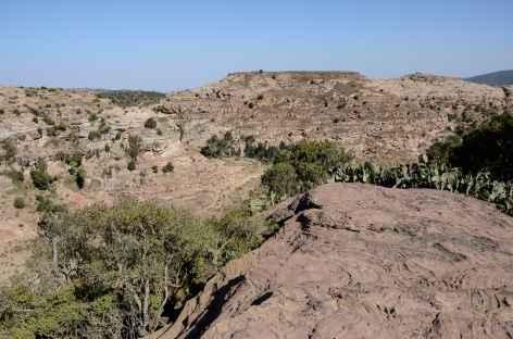 Randonnée vers l'église de Mikaël Imba, massif de l'Atsbi - Ethiopie -