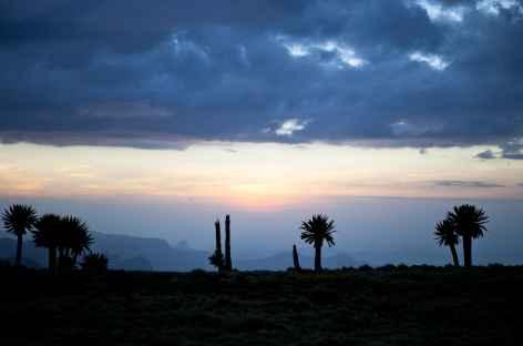 Coucher de soleil dans le Simien - Ethiopie -
