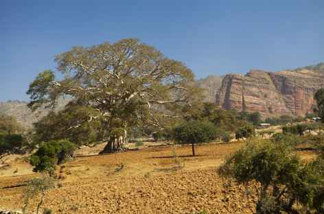 Région du Gheralta - Ethiopie -